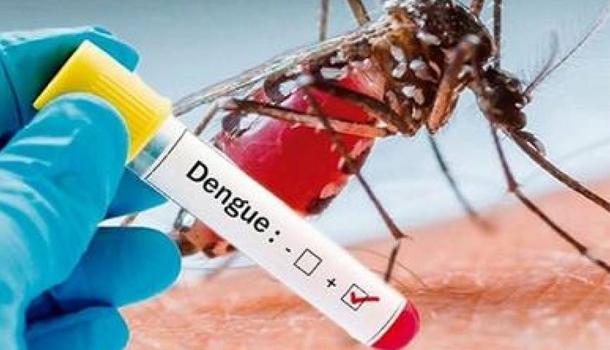 Van registrado 50 muertos por dengue en lo que va de año
