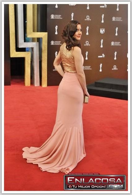 Los Mejores Y Peores Vestidos De Los Premios #Soberanos2014 #Fotos