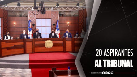 Evalúan Los Primeros 20 Aspirantes Al Tribunal Constitucional