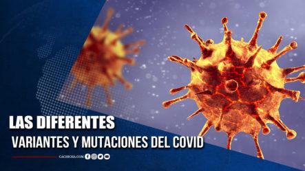 Las Diferentes Variantes Y Mutaciones Del Covid  | Tu Tarde