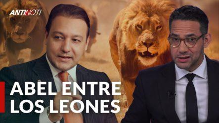 El León Ataca A Abel Martínez | Antinoti