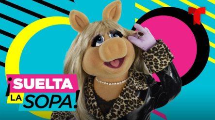 Piden Cancelar Al Personaje De 'Miss Piggy' De 'Los Muppets'   Suelta La Sopa