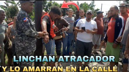 ¿Demi Lovato Está Saliendo Con Noah Cyrus? Niall Horan, Beyoncé Y Más Víctimas De Robos
