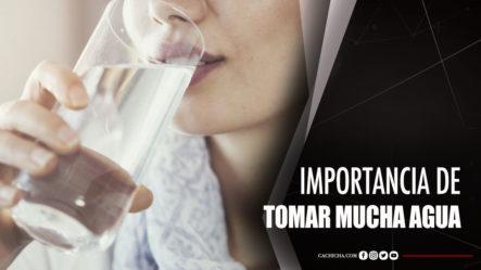 Nutrióloga Explica La Importancia De Tomar Mucha Agua