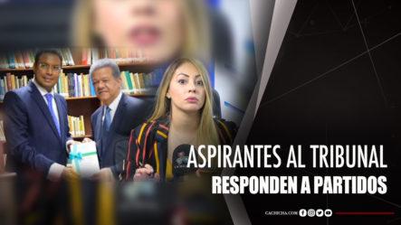 Aspirantes A Tribunal Constitucional Responden A Partidos Políticos Según Muñoz
