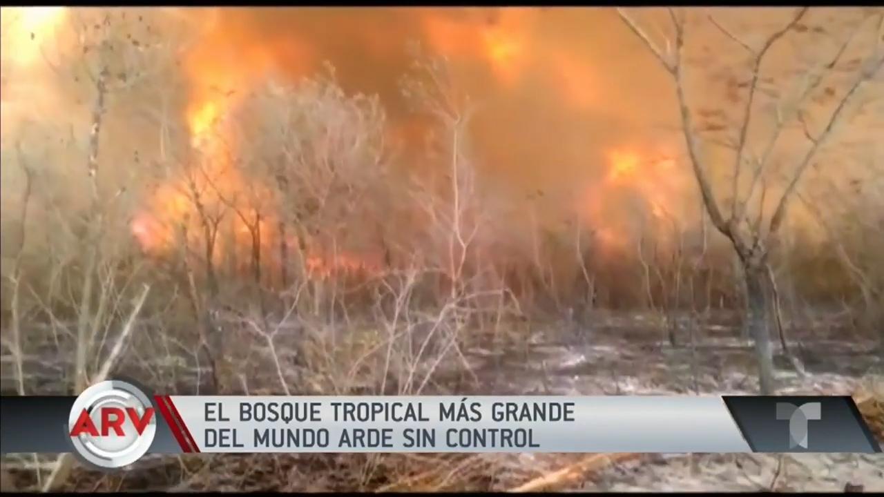 Avanzan los incendios en el Amazonas y se evidencia